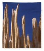 Detail Of Bristlecone Pine Fleece Blanket