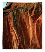Devils Arch Fleece Blanket