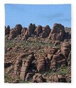 Devils Canyon Arizona Fleece Blanket