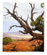 Devils Garden 2 Fleece Blanket