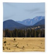 Devil's Head Fire Tower In The Pike National Forest Fleece Blanket