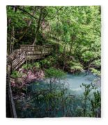 Devil's Millhopper Gainesville Fl II Fleece Blanket