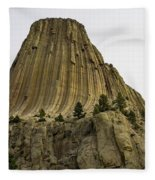 Devils Tower 6 Fleece Blanket