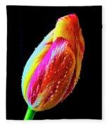 Dew Beaded Tulip Fleece Blanket