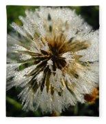 Dew Covered Dandelion Fleece Blanket