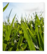 Dewdrops On New Wheat Fleece Blanket