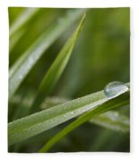 Dewy Drop On The Grass Fleece Blanket