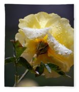 Dewy Yellow Rose 1 Fleece Blanket
