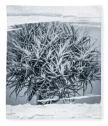 Dianthus Barbatus Bw Fleece Blanket