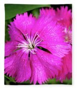 Dianthus First Love Flower Print Fleece Blanket