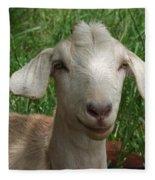 Did You Bring Lunch Fleece Blanket