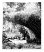 Digital Paint Black White Landscape Louisiana  Fleece Blanket