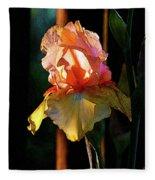 Digital Painting Iris Catching The Sun 6768 Dp_2 Fleece Blanket