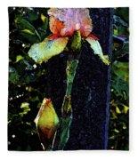Digital Painting Pink And Yellow Iris 6758 Dp_2 Fleece Blanket