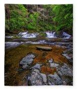 Dingmans Creek Fleece Blanket