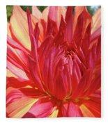 Dinner Plate Dahlia Flower Art Print Orange Baslee Troutman Fleece Blanket