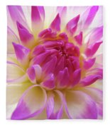 Dinner Plate Dahlia Flower Art Prints Canvas Floral Baslee Troutman Fleece Blanket