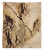 Dino Tracks In The Desert 2 Fleece Blanket