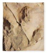 Dino Tracks In The Desert 3 Fleece Blanket