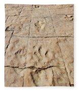 Dino Tracks In The Desert 4 Fleece Blanket
