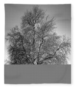 Discovery Park No.1 Fleece Blanket