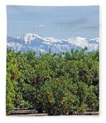 Dm6850-e Orange Grove And The Sierra Nevada Ca Fleece Blanket