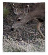 Doe Carefully Grazing In Tombstone Fleece Blanket