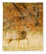 Doe High Stepping On Bald Mountain Fleece Blanket