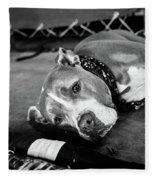 Dog At The Ring Fleece Blanket