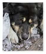 Dog Days Of Summer Fleece Blanket