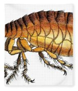 Dog Flea, Illustration Fleece Blanket