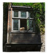 Dog In A Window Above The Canal In Bruges Belgium Fleece Blanket