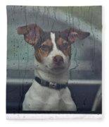 Dog Looking Out Car Window Fleece Blanket