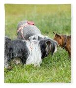 Dog Meeting  Fleece Blanket