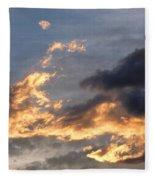 Dog Race Cloudscape 1 Fleece Blanket