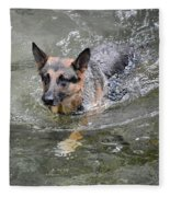 Dog Swimming In Cold Water Fleece Blanket