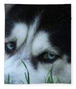 Dog Tired Fleece Blanket