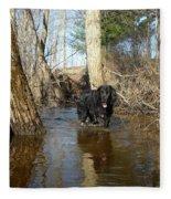 Dog Wading In Swollen River Fleece Blanket