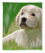 Doggie Seems Sad Fleece Blanket