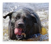Dogs Sticks And Ponds Fleece Blanket