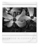 Dogwood Blossoms Bw Poster Fleece Blanket