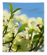 Dogwood Flowers Art Prints Canvas White Dogwood Tree Blue Sky Fleece Blanket