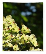 Dogwood Flowers White Dogwood Tree Flowers Art Prints Cards Baslee Troutman Fleece Blanket