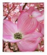 Dogwood Tree 1 Pink Dogwood Flowers Artwork Art Prints Canvas Framed Cards Fleece Blanket