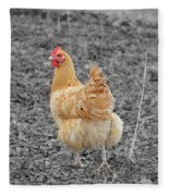 Domestic Feathered Beauty Fleece Blanket