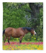 Domestic Horse In Field Of Wildflowers Fleece Blanket