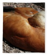 Domestic Mandarin Duck Close Up Fleece Blanket