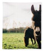 Donkey And Pony Fleece Blanket