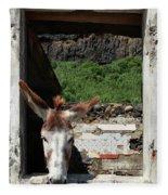 Donkey At The Window Fleece Blanket