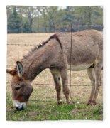 Donkey Finds Greener Grass Fleece Blanket